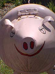 Letterbox pigs on the wings Nimbin NSW Australien 920t