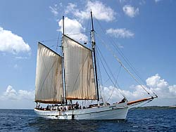 Segelboot karibik  Karibik: Mitsegeln auf Charter-Booten - Segelbooten oder Motorjachten